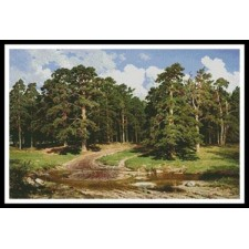 Pine Forest - #11367