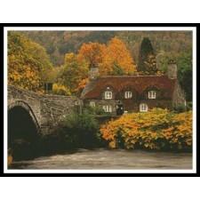 Autumn Cottage - #10051