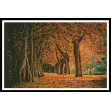 Autumn Landscape - #10340