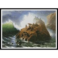 Seal Rock - #10533