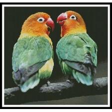 Lovebirds - #10579