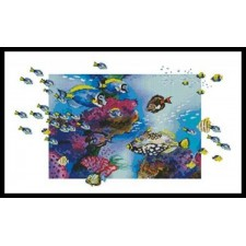 Clown Triggerfish - #10619-HH