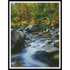 Autumn Stream - #10712