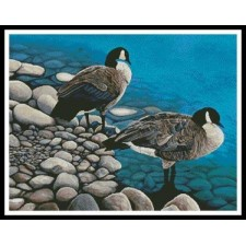 Two Canadian Geese - #10719-MB