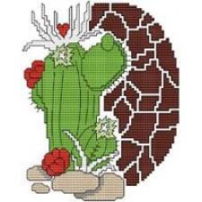 Arizona Heart Cactus