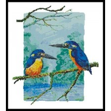 Two Azure Kingfishers - #10768HH
