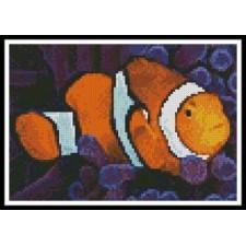 Mini Clownfish in Anemone - #10771