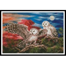 Pair of Owls - #10781-KH