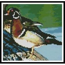 Mini Wood Duck - #10783