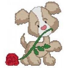 Puppy Rose