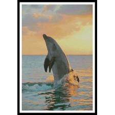 Golden Sunset Dolphin - #10929