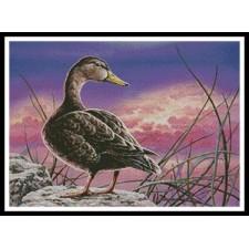 Mottled Duck - #10930-ARTL