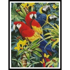 Tropical Macaws - #10937-INT