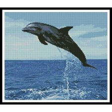 Dolphin Leap - #10962