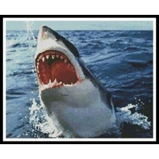 Great White - #10968
