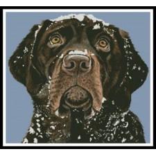 Snow Dog - #11053-HC