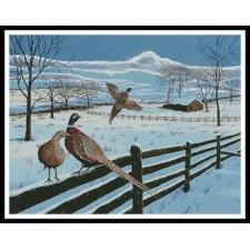 Pheasants in Winter - #11055-MB