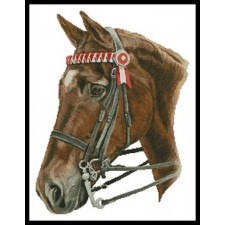 Horse Profile - #11056-HC