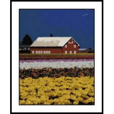 Red Barn in Tulip Fields