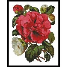 Mini Pink Camellia - #11068