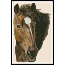 Bay Horse - #11081-HC