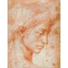 Michelangelo's Ideal Face