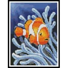 Mini Clownfish 2 - #11094