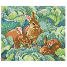 Bunny's Cabbage Garden