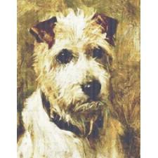 Portrait of a Terrier: Darkie