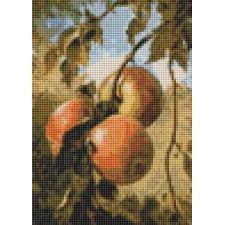 Apples (Mini Chart)