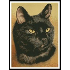 Black Cat - #11160-HC