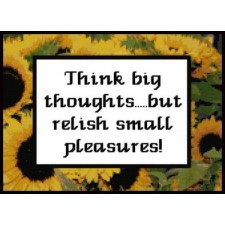 Think big thoughts Sampler