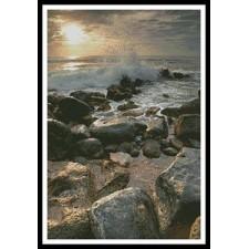 Beach Rocks - #11164