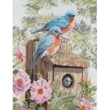 Garden blue birds