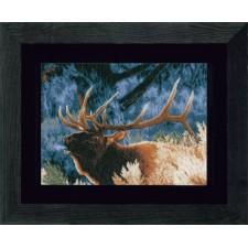 (OP=OP) Counted cross stitch kit Indian-summer - Elk