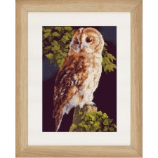 Counted cross stitch kit Owl