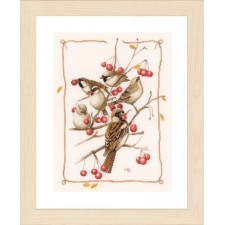 Counted cross stitch kit Sparrows and currant