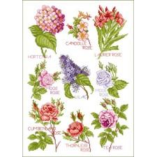 Bloemenmagie