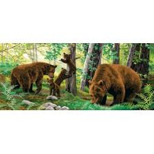 Beren in het bos