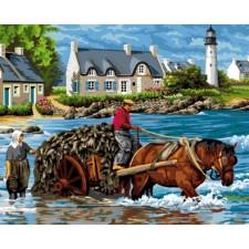 Paard en wagen in zee