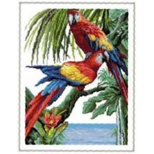 Papegaaien - Tropiques