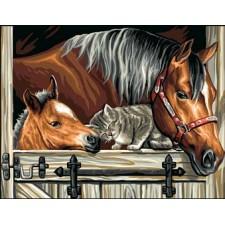 Paarden en slapende poes