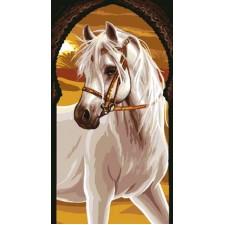(OP=OP) Paard