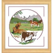Koeien - VACHES