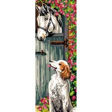 Paard en hond - Surprise