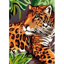Luipaard - Léopard
