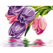 Tulpen - Les tulipes