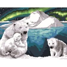 Ijberen in het Noorderlicht  - Aurore Australe
