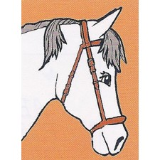 Paard - Cheval