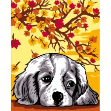 Hond in de Herfst - Tom automne